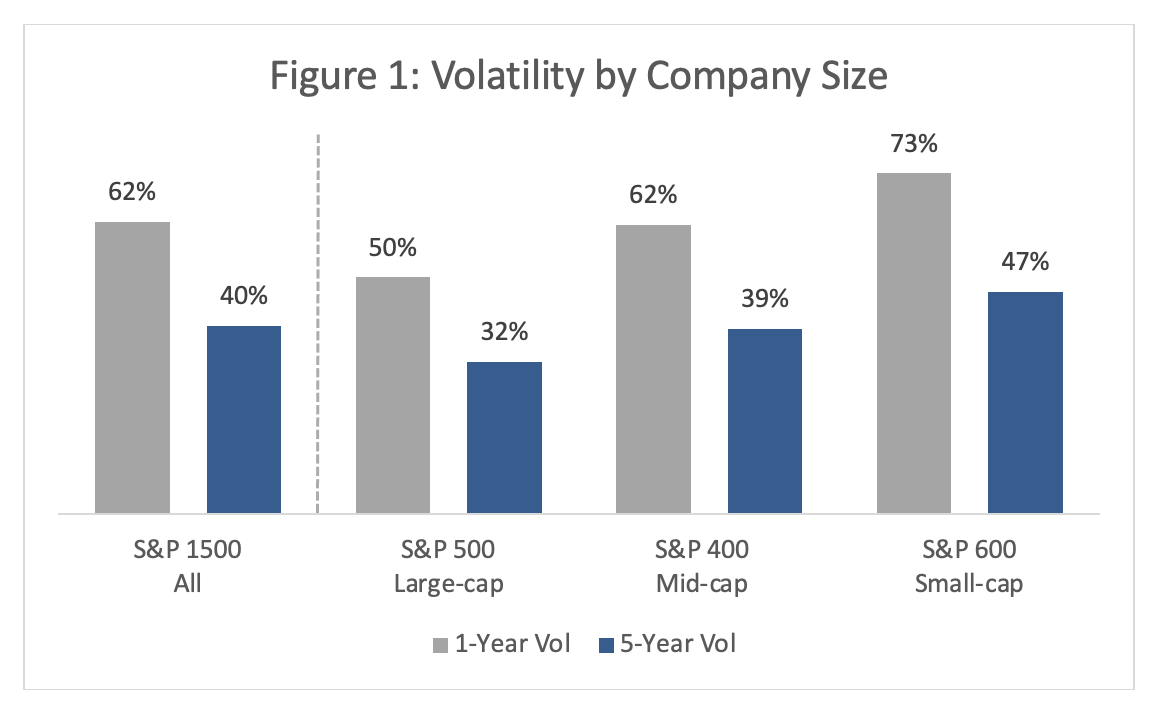 Private Company Volatility 1
